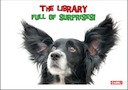 The library: Full of surprises CP2016