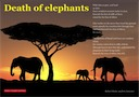 'Death of Elephants' poem written by